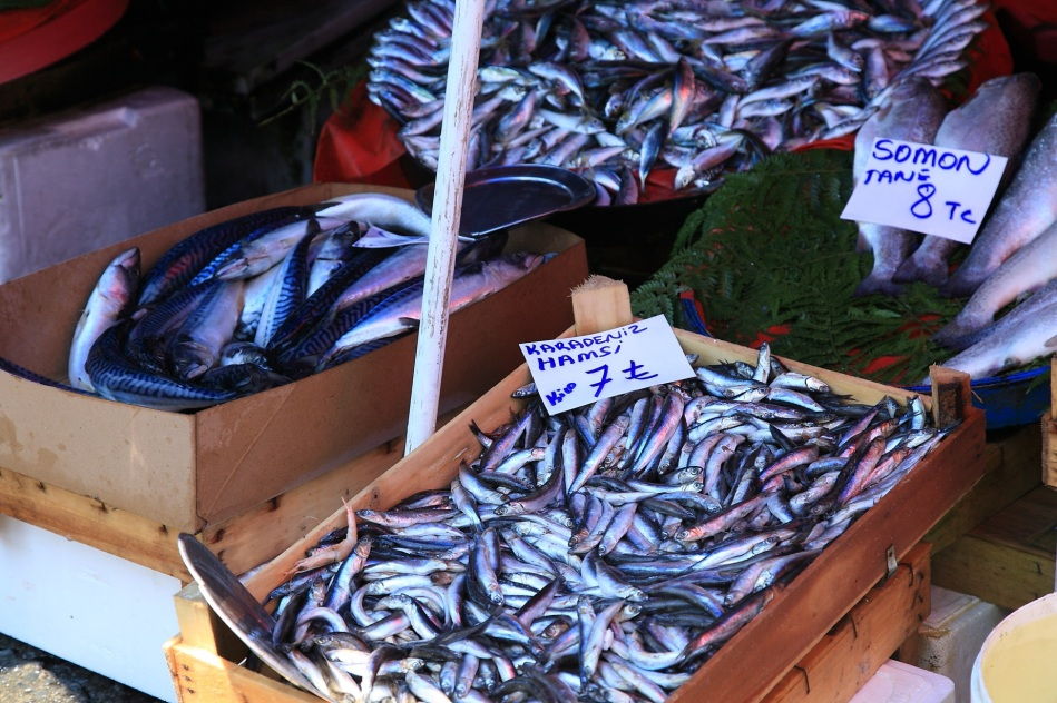 Fish stalls on the market - Istanbul